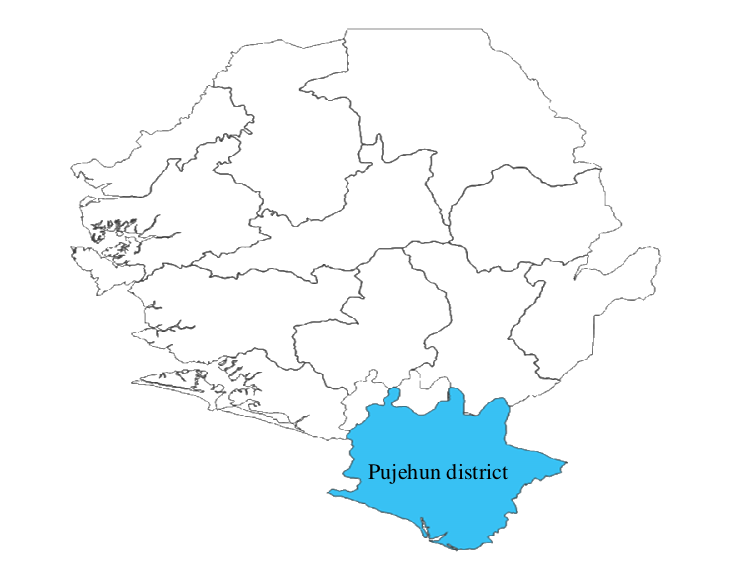 Factsheet on Large-Scale Agri-Investments in Pujehun District, Sierra Leone 2013