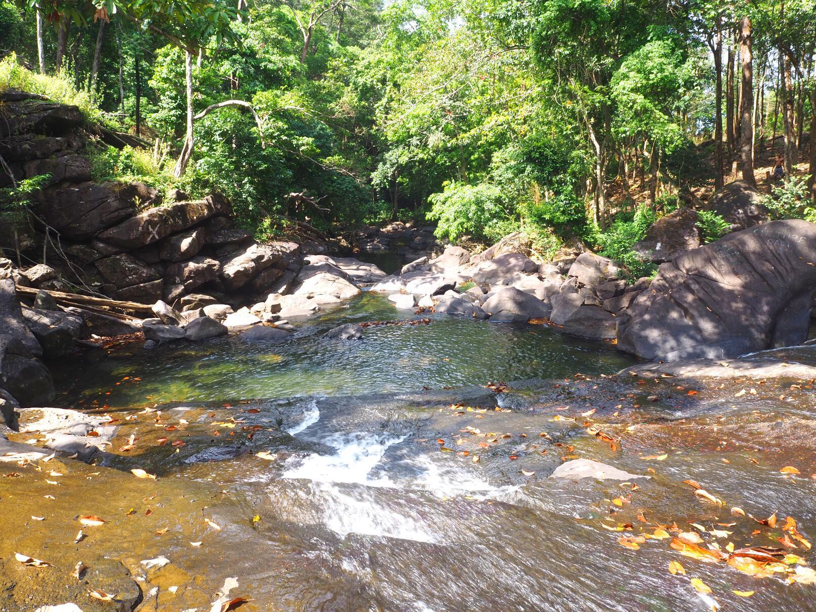 18,000 trees at Mambo Waterfall